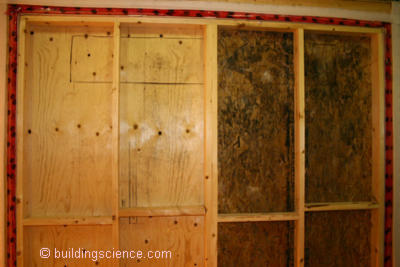 BSI-027: Material View of Mold | Building Science Corporation